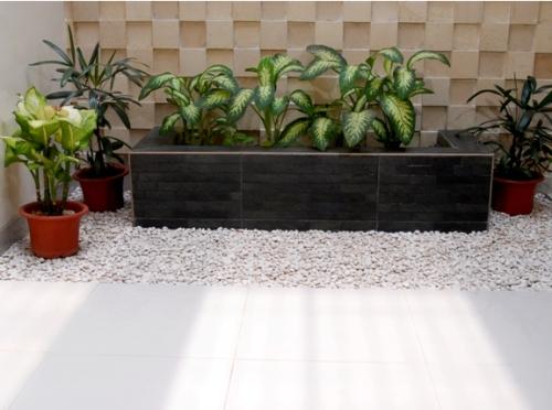 Desain taman kering tropis di dalam rumah