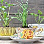 Inspirasi Taman Rumah Minimalis Cantik dengan Barang Bekas