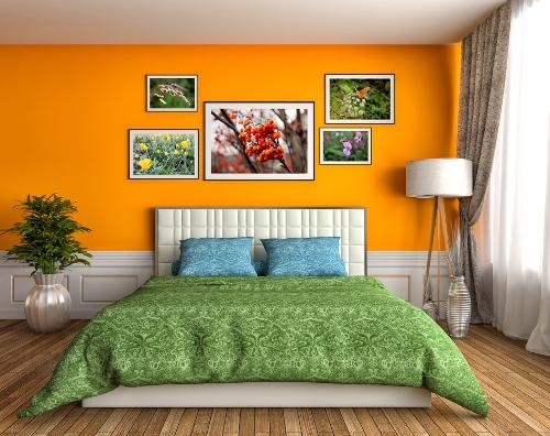 Kombinasi orange-hijau di kamar tidur open-plan - Shutterstock