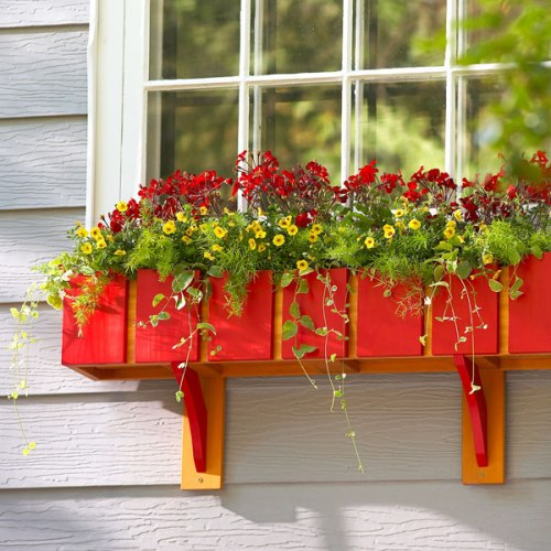 Windows planter cantik dengan bunga warna-warni - Reinhartrealtors