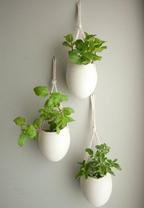 Planter vertikal gantung berbahan botol bekas - Homedeco