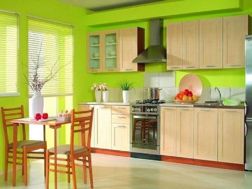 Desai interior dapur kecil Go Green (Elgintxhomes)