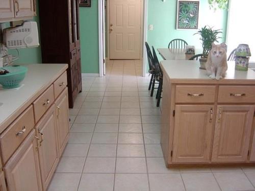 Contoh dapur berlantai keramik (Inthecreation)