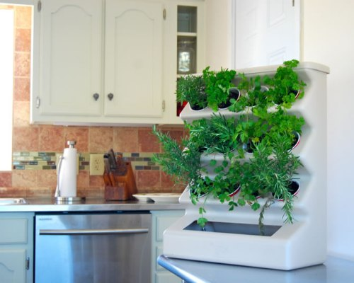 Planter vertikal tanaman bumbu untuk dapur - Homedeco