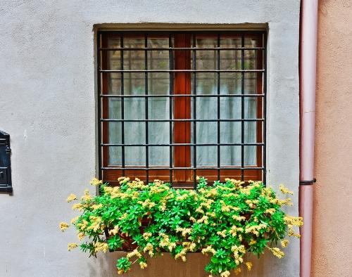 Windows planter minimalis untuk tampak depan rumah - Shutterstock